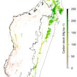 Carbon_Map_Final